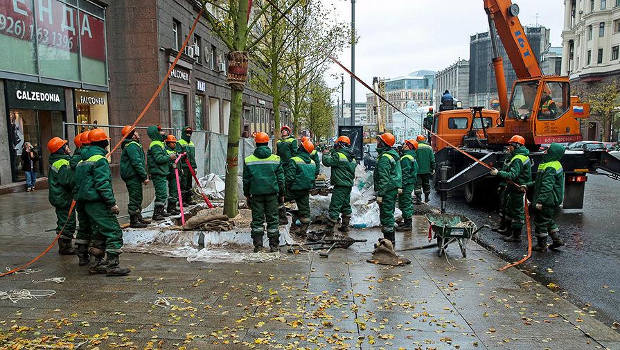 Сотрудники коммунальной службы высаживают деревья на Тверской улице в рамках программы благоустройства «Моя улица» в Москве