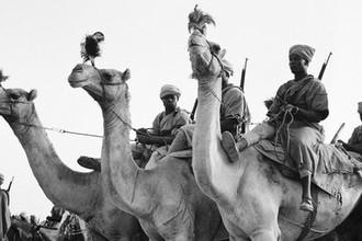 От Бразилии до Монголии: кто воевал за и против Гитлера