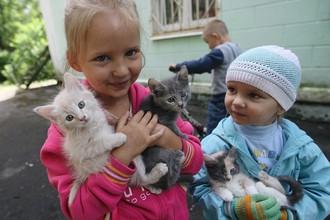 Дети беженцев из Луганской области
