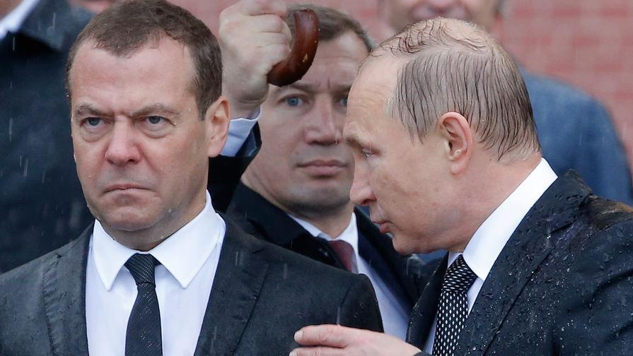 Картинки по запросу Медведев Д.А. бешеный