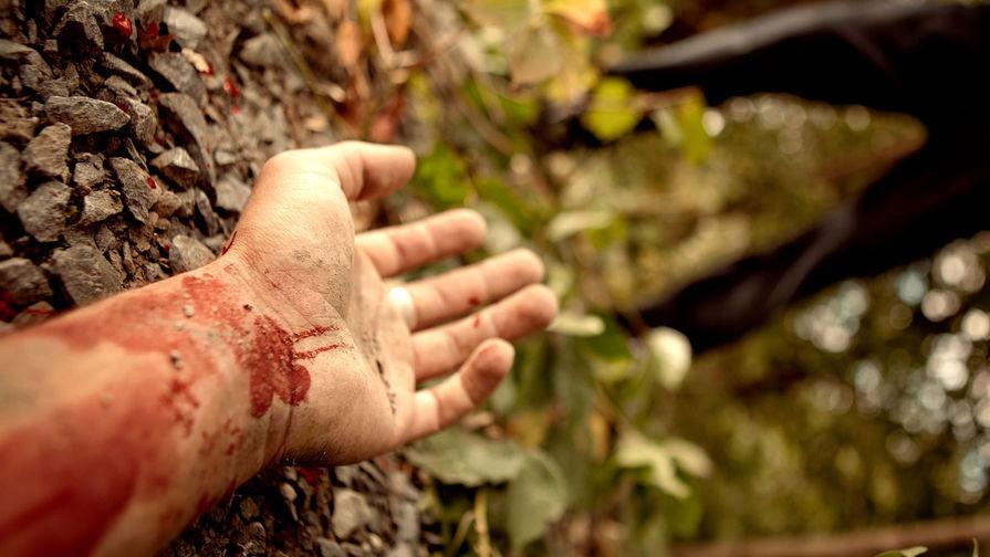 В подмосковном лесу обнаружено тело мужчины с отрезанной головой