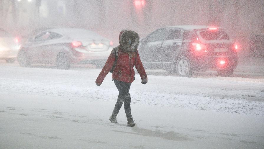 Синоптик рассказал, когда в Москву вернется зимняя погода