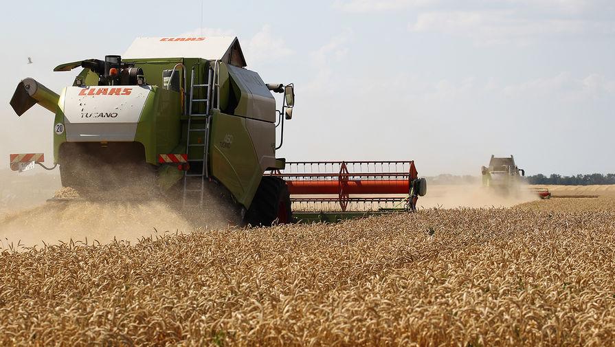 Р'РњРёРЅСЃРµР»СЊС…РѕР·Рµ рассказали, сколько зерна удалось собрать