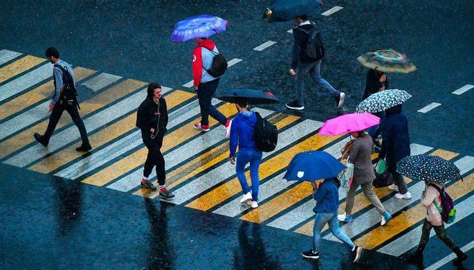 Спасти пешеходов: водителей притормозят на «зебрах»
