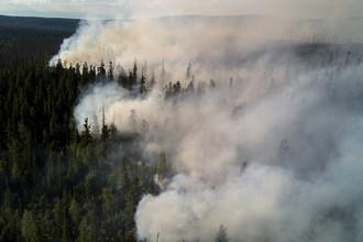 Июль 2017 года. Лесные пожары в Кабанском районе Бурятии