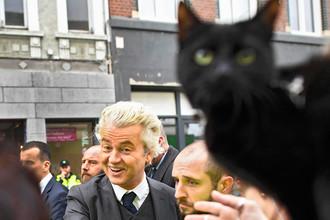 Нидерландский политик Герт Вилдерс с кошкой во время мероприятия кампании в Херлене, 11 марта 2017 года