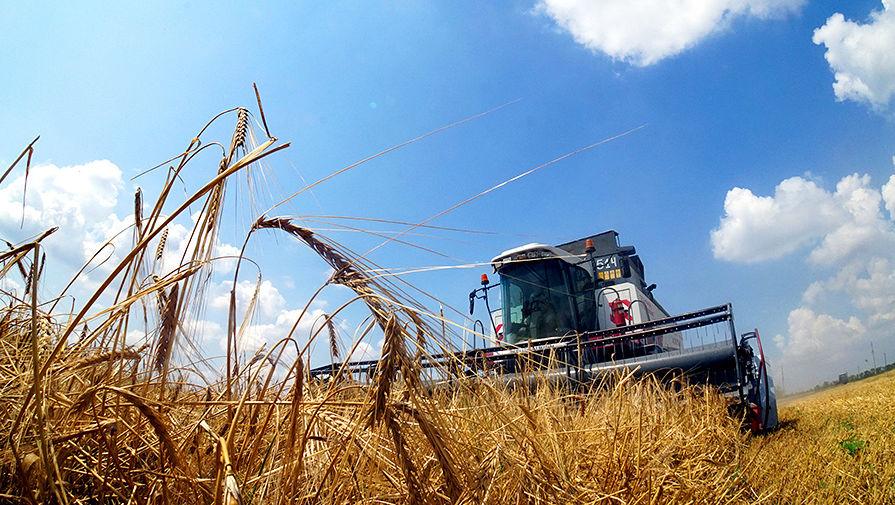 Цены на хлеб не снизятся несмотря на удвоение запасов
