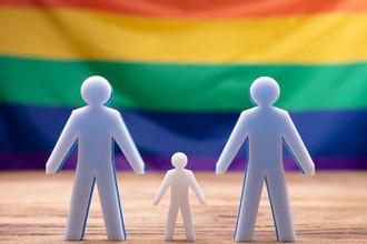 «Сплю с папами»: СК проверит историю ребенка из гей-семьи