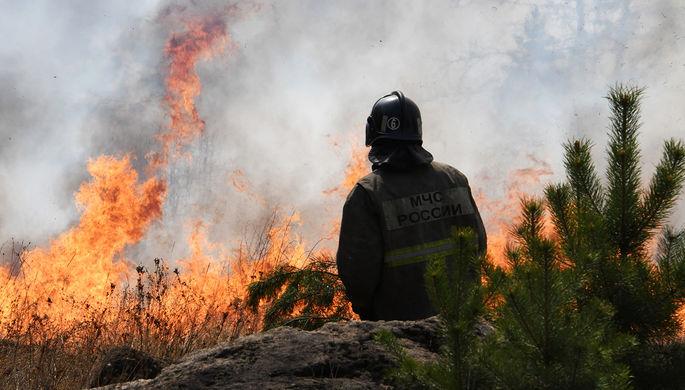 Дожди не помогут: где в России будут гореть леса в 2021 году