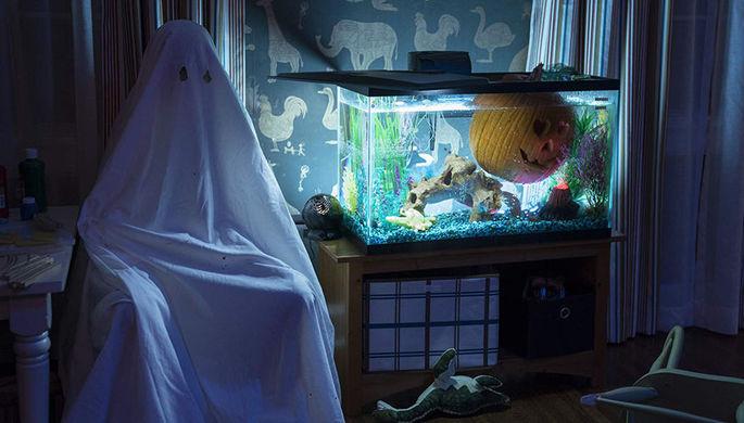 Кадр из фильма «Хэллоуин» (2018)