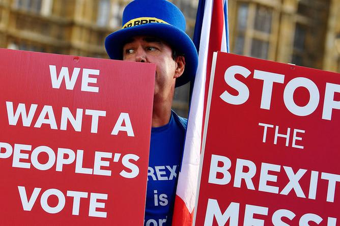 Демонстрант с плакатами против выхода Великобритании из Евросоюза около здания парламента в Лондоне, 13 ноября 2018 года