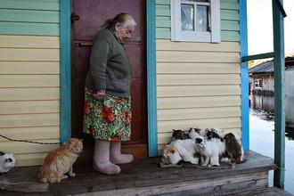 Работающим пенсионерам с 1 августа прибавили пенсию на 222 рубля