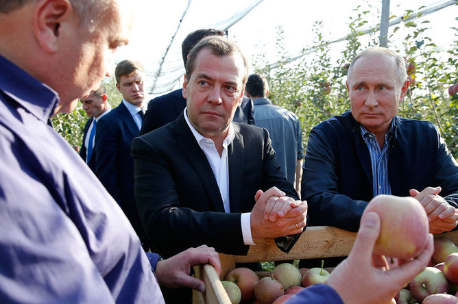 Президент России Владимир Путин и председатель правительства России Дмитрий Медведев во время осмотра яблоневых садов в Ставропольском крае, 9 октября 2018 года