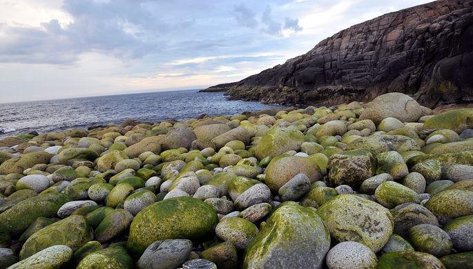 Океан и сияние: что туристы ищут на российском Севере