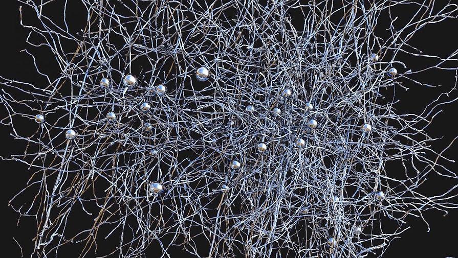 Модель нейронной сети, созданная учеными