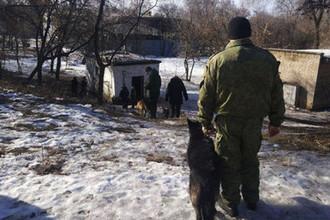Ситуация на месте взрыва в Донецке, 18 февраля 2019 года