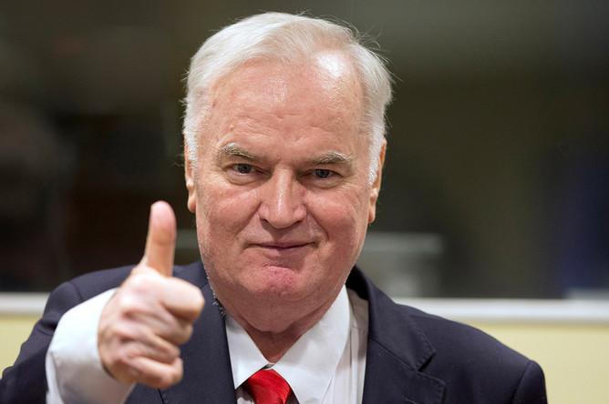 Ратко Младич. Гаага, 22 ноября 2017 года