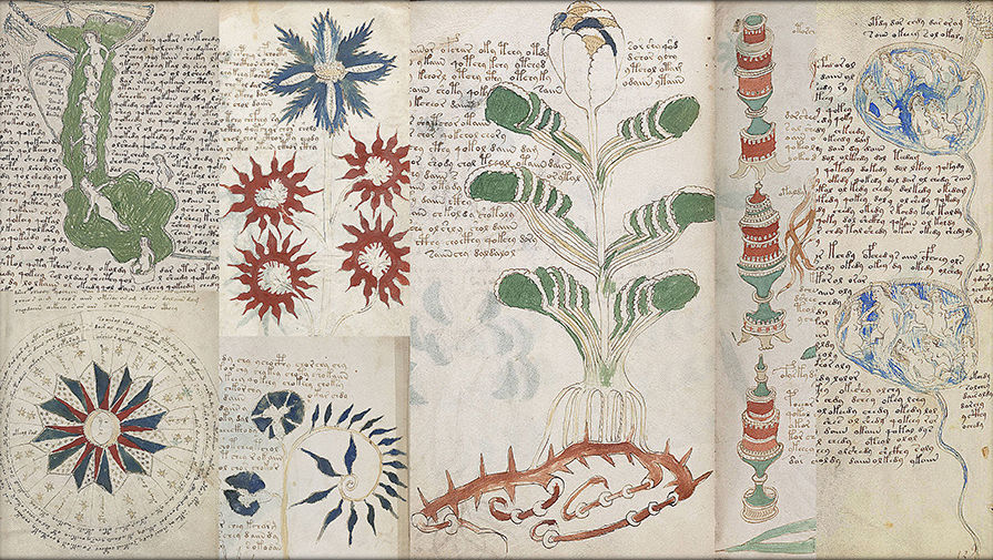 voynich-collage-pic905-895x505-95001.jpg