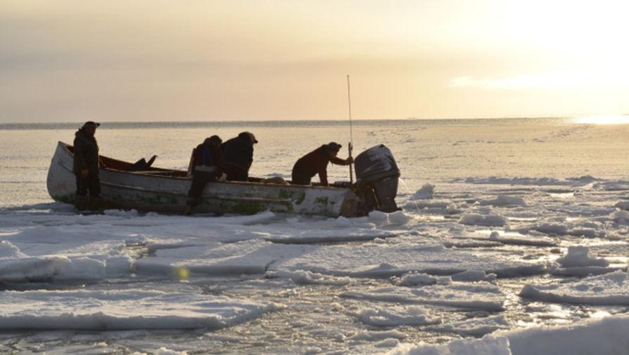 Канадские военные ищут причину загадочных звуков, идущих со дна моря