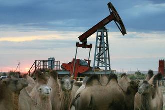 Удар в спину: в Казахстане променяли «Газпром-нефть» на Украину