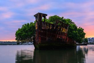 Заброшенное судно SS Ayrfield: корабль – плавающий лес в Сиднее (Австралия). Корабль был построен в Британии в 1911 году и использовался правительством Австралии для перевозки припасов американским войскам, находившимся в Тихоокеанском регионе, во время Второй мировой войны. Он был продан в 1950 году и использовался для перевозки угля из Ньюкасла в Сидней, пока в 1972 году не было принято решение отправить его в сиднейский залив Homebush Bay, где он находится до сих пор. За годы на корабле разрослись мангровые деревья, образовав настоящие заросли