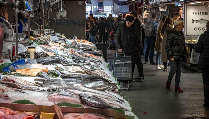 Не попасться на удочку: вскрылась глобальная фальсификация рыбы и морепродуктов