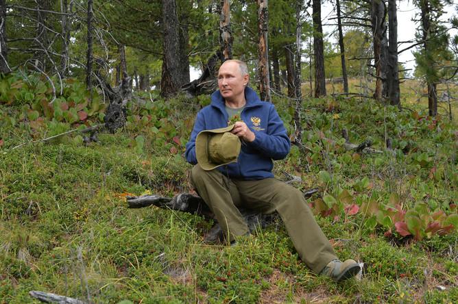 Президент России Владимир Путин во время прогулки в тайге, фотография опубликована 7 октября 2019 года