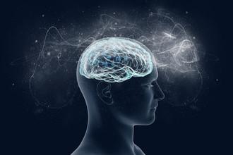 Нейроны на страже ориентации