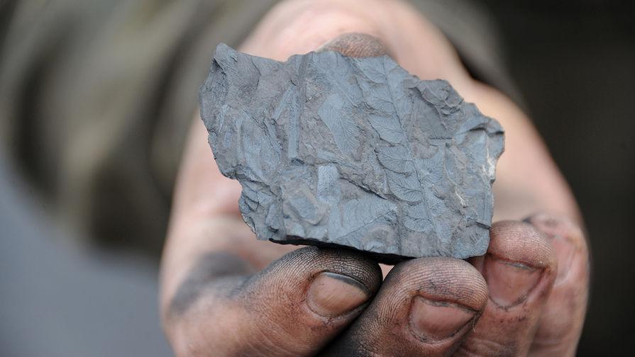 Уголь поборется за долю