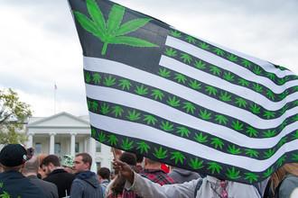 Акция в поддержку легализации марихуаны перед Белым домом в Вашингтоне, 2016 год