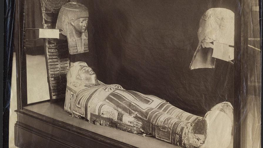 Как студентка смогла прочитать имя древнеегипетской мумии