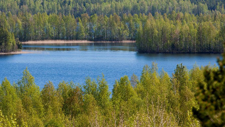 Сладкое озеро челябинская область фото