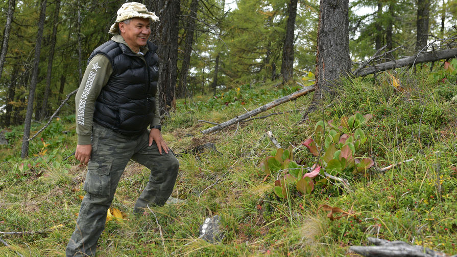 Министр обороны России Сергей Шойгу во время совместной прогулки с президентом Владимиром Путиным в тайге, фотография опубликована 7 октября 2019 года
