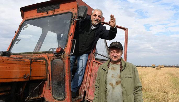 Ким Ки Дук, Тодоровский и блокадный Ленинград: что смотреть на ММКФ-2020