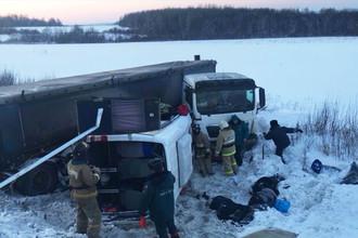 Ситуация на месте ДТП с микроавтобусом и фурой на 1545-м километре федеральной автодороги М-5, 27 февраля 2018 года