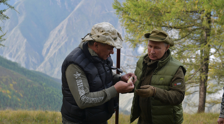 Путин и Шойгу собрали грибы в тайге - Газета.Ru   Новости