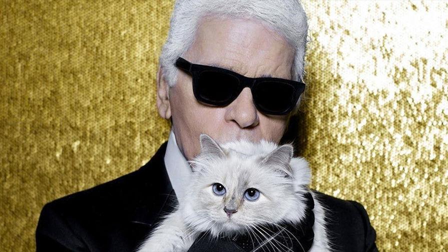Состояние Карла Лагерфельда может унаследовать его кошка