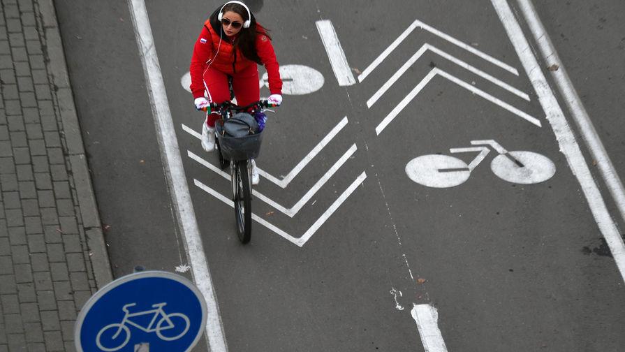 Знаки и разметка: велосипедистов вписали в ПДД