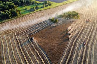 От мяса до риса: самые богатые землевладельцы России