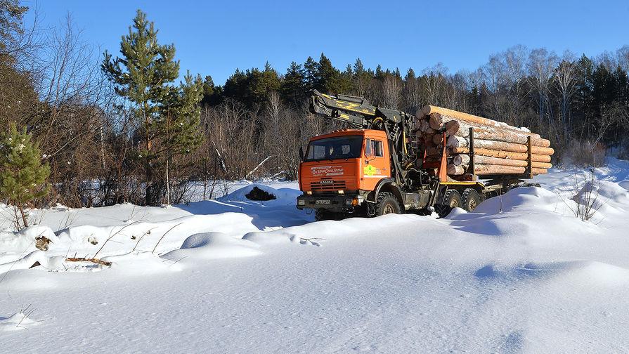 Лесозаготовка в Челябинской области, 2017 год