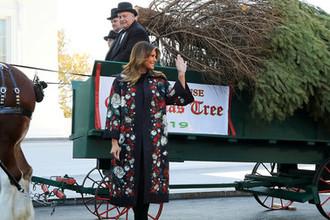 Первая леди США Меланья Трамп встречает рождественскую елку у белого дома, 25 ноября 2019 года