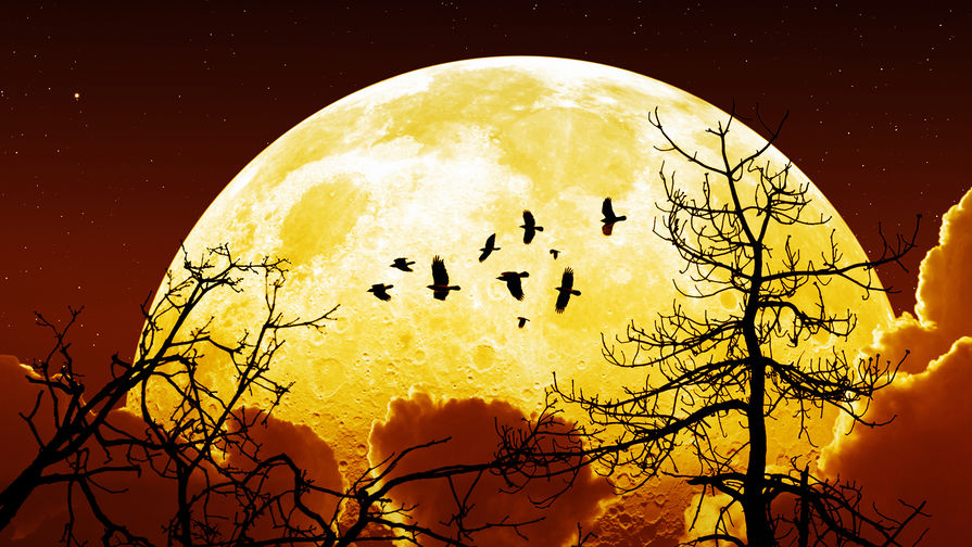 Обнаружено влияние фаз Луны на продолжительность сна людей
