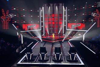 Фрагмент передачи «Голос 8» (Кадр из видео)