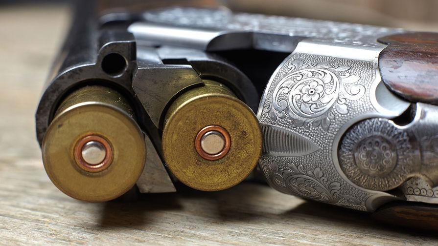 В Тульской области пожилой мужчина выстрелил из ружья во внучку