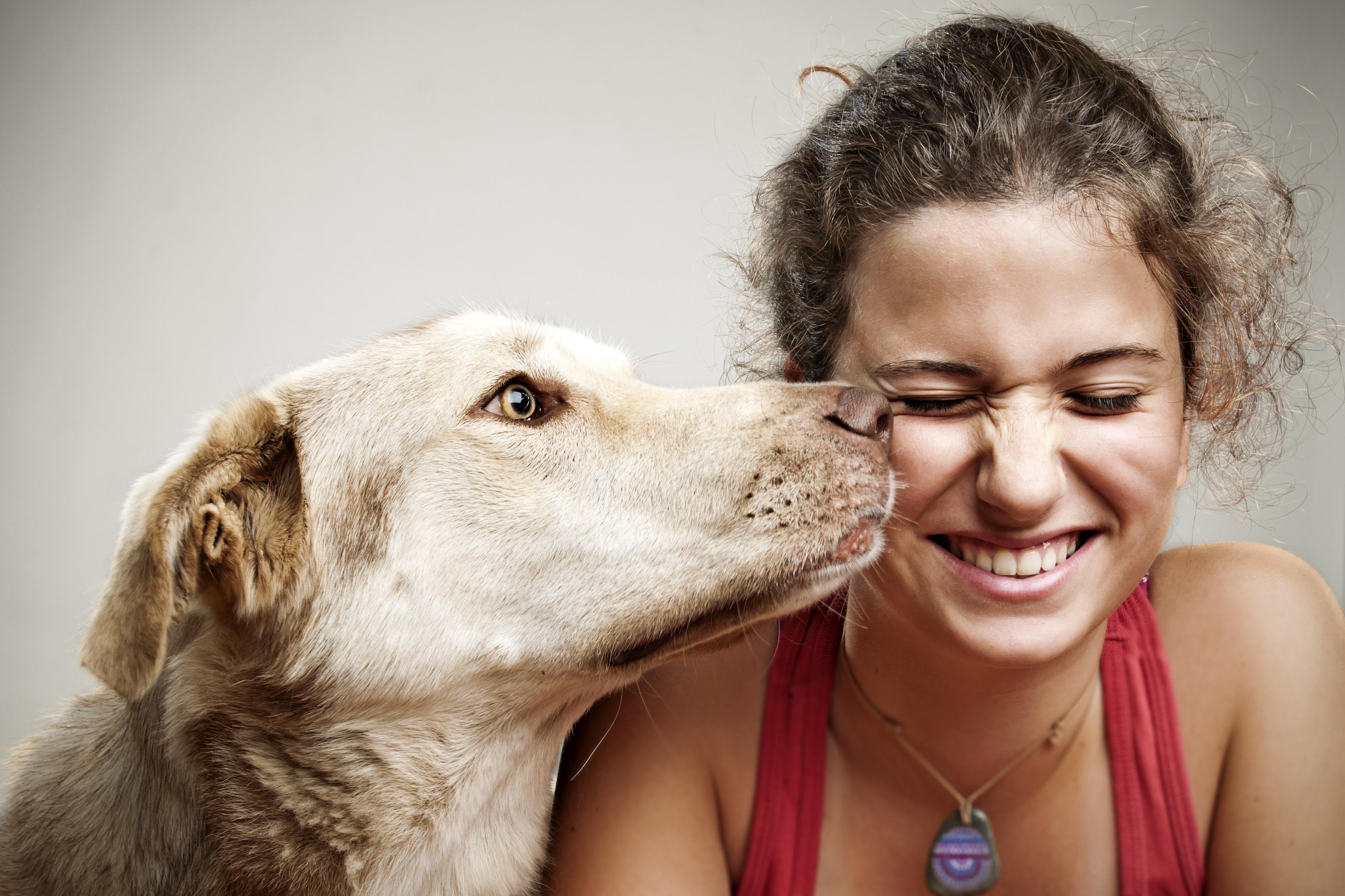 картинки эмоции людей и животных помощью люди