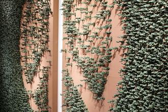 Символ мира из 20 тысяч фигурок игрушечных солдатиков. Работа Оле Укена «В отсутствие войны»