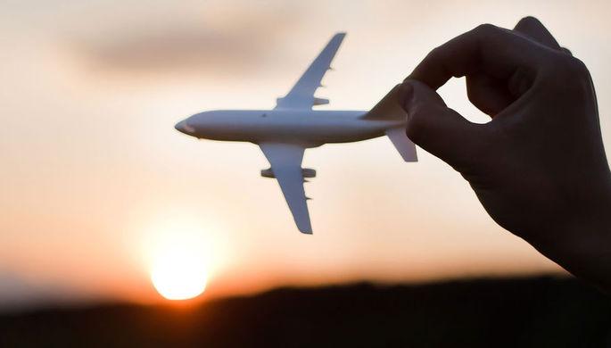В МВД прокомментировали создание службы «воздушных маршалов» в России