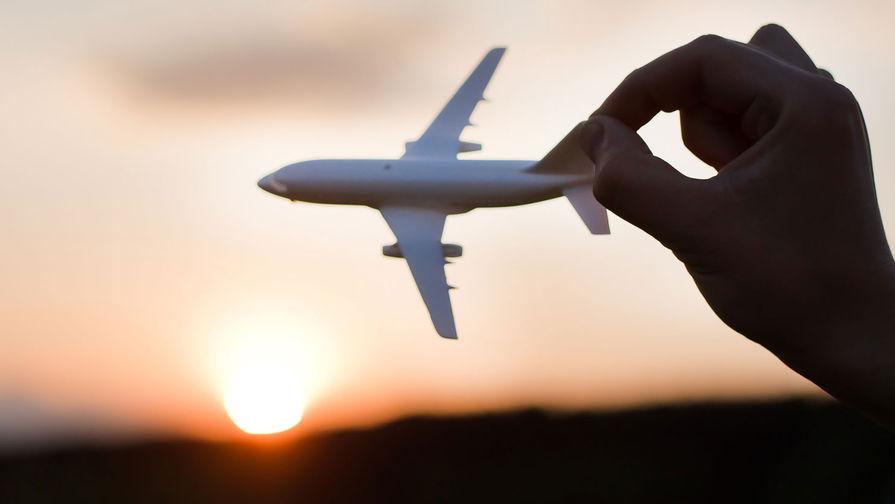Российские авиакомпании захотели лишить привилегий
