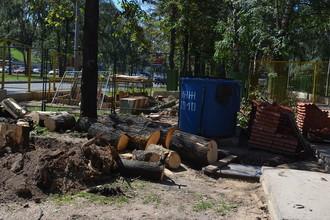 Во вторник в Москве вдоль Мичуринского проспекта шли работы по вырубке яблоневой аллеи