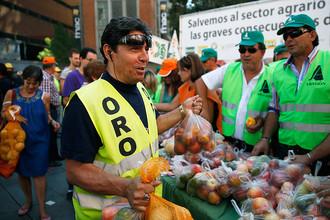 Испанские фермеры раздают фрукты и овощи в знак протеста против последствий российского эмбарго на импорт этой продукции